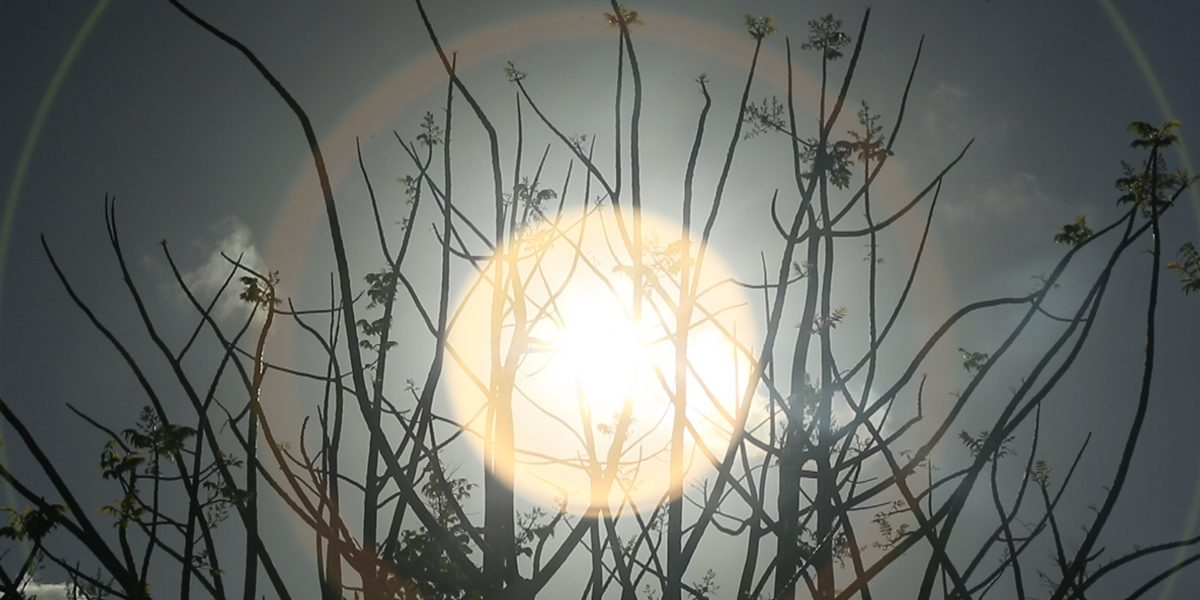 Christophe Chassol, BIG SUN, video still, 2014. Photo courtesy of the artist