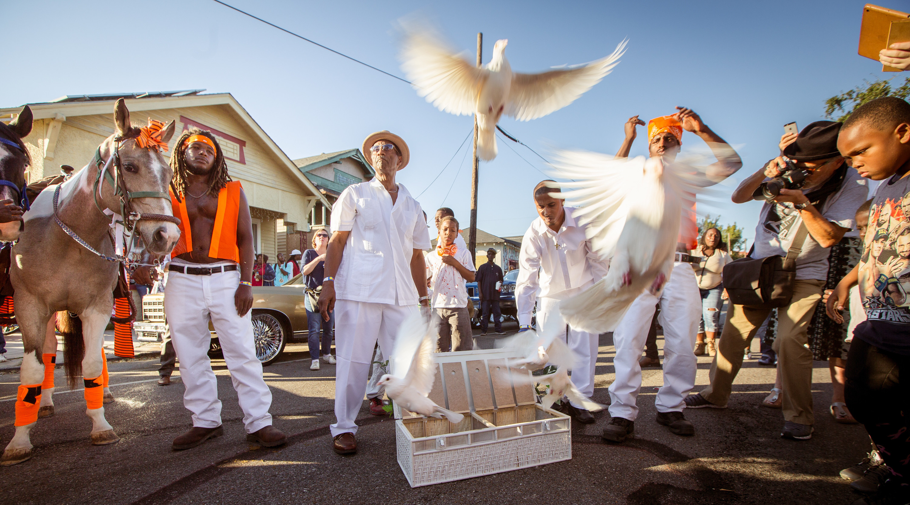 Big Chief Dalcour and the Serenity Peace Birds. Photo Josh Brasted